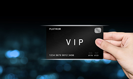 Vip Security Services